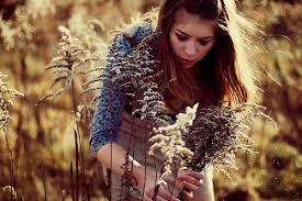 Сбор трав (5)